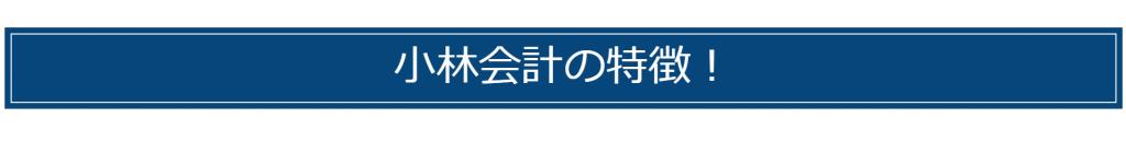 浜松市 小林税理士の特徴