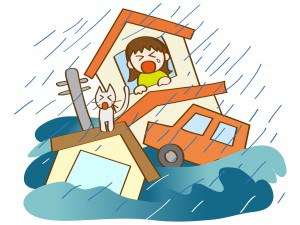 大雨などで資産の損害があった場合