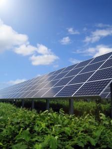 太陽光設置によるグリーン投資減税適用期限